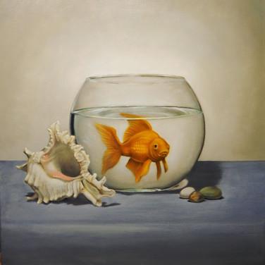 Dreams, 2016. Oil on canvas, 24x24