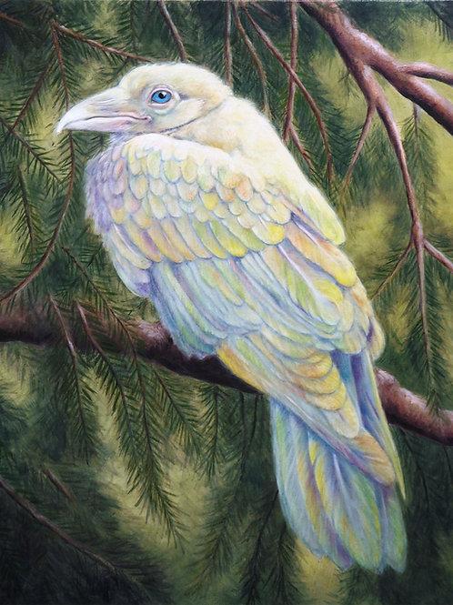 Rainbow Raven - Giclee Print