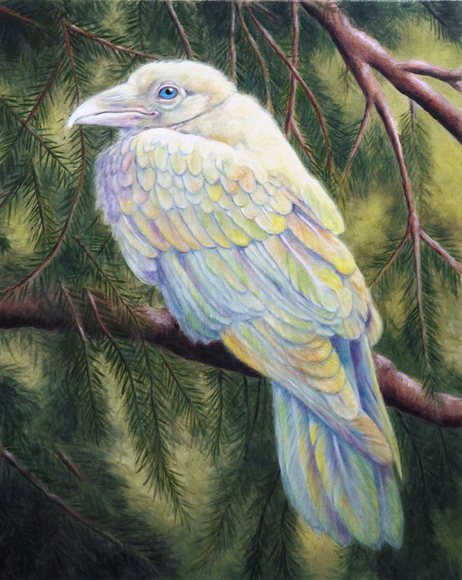 Rainbow Raven, 2019. Oil on canvas, 20x16 inches.