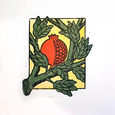 pomegranate_6.jpg