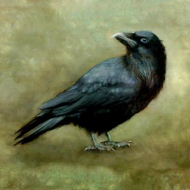 Raven, 2014. Oil on canvas, 10x12