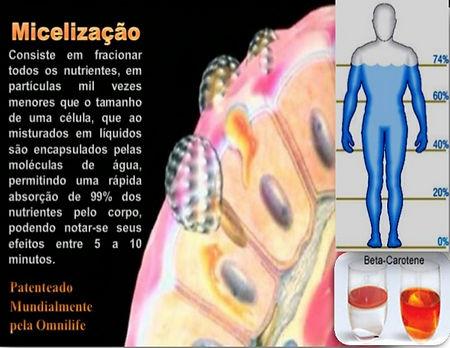 micelização (2)_edited.jpg