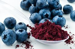Antioxidant rich Blueberry Powder made f