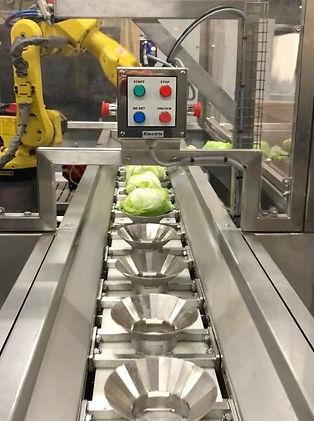 Conveyor.jpeg