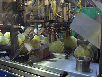 cabbage machine.jpeg