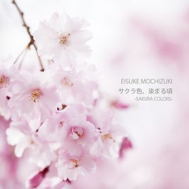 EISUKE_DEP4_sakurairo_jaket.jpg