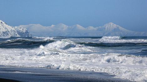 Surfer en hiver... une bonne idée ?