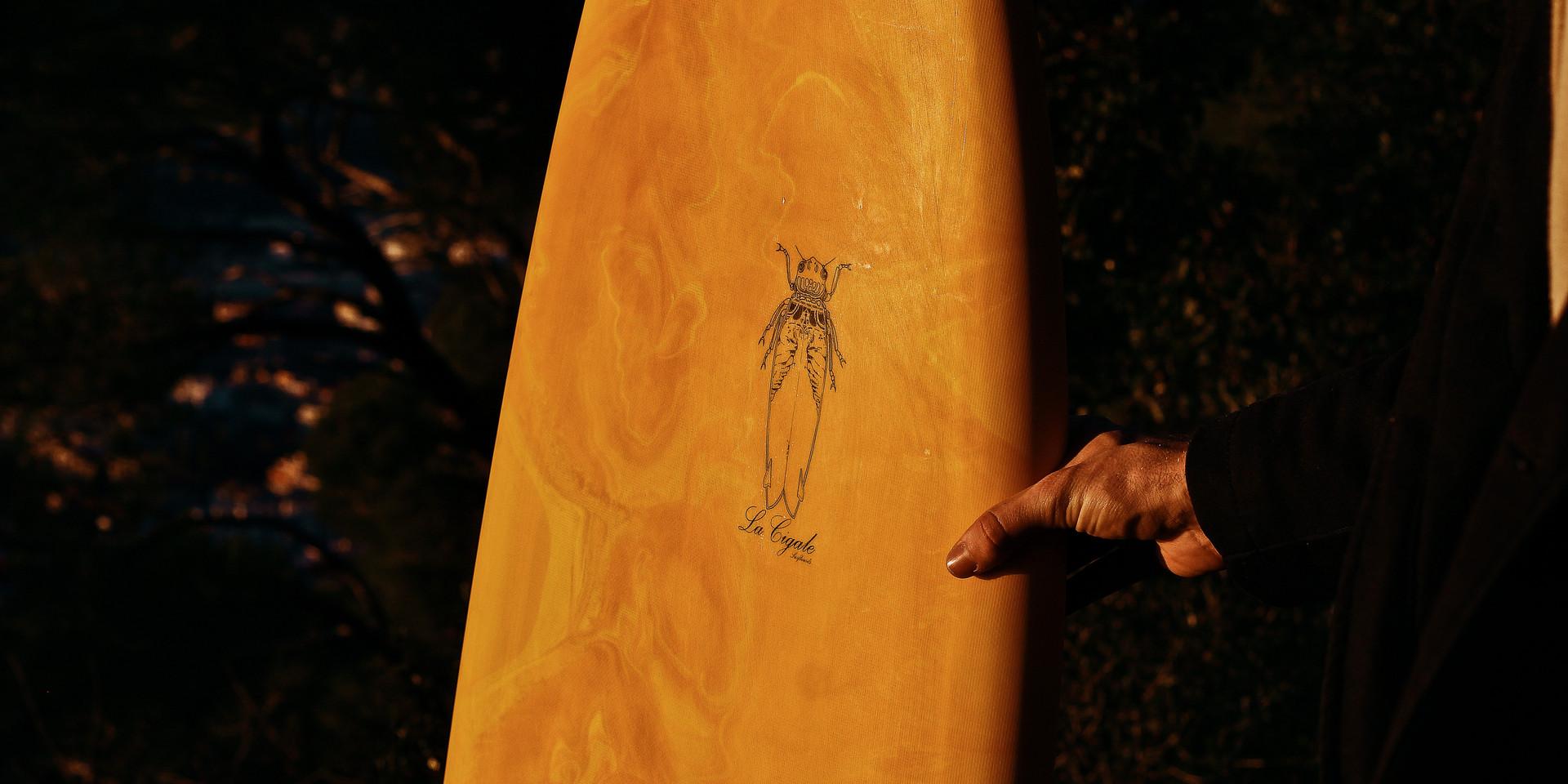 La Cigale Surfboard