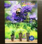 North Creek Nurseries Plant Catalouge