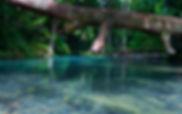 Cairns4.jpg