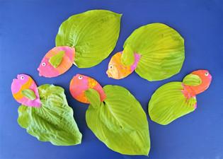 Hosta Leaf Fish