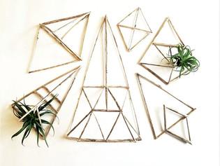 Dried Stick Terrariums