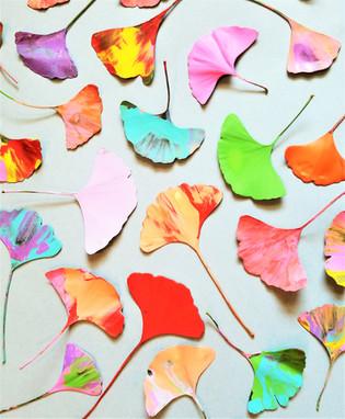 Ginkgo Leaf Scrape Art