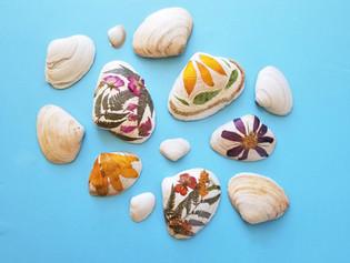 Pressed Flower Seashells