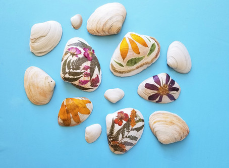 Pressed Flower Seashells