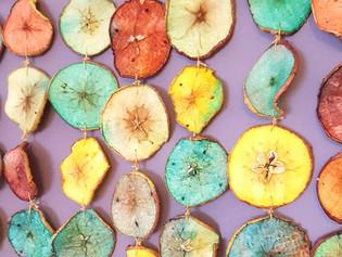 Dehydrated Apple Art