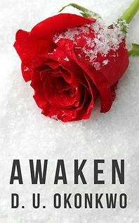 Awaken book cover.jpg