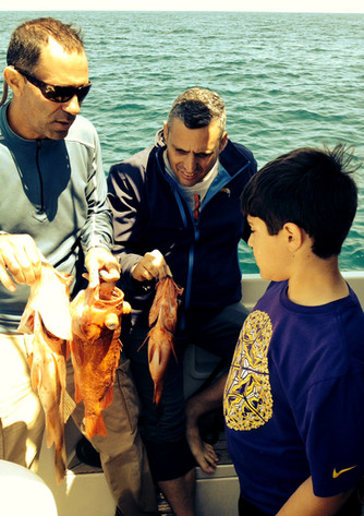 Epic Fishing Season Continues With Record Catches, Whale Watching