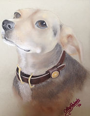 Beagle by Cathy Edwards