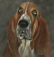 Basset Hound by Cathy Edwards