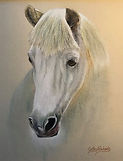 Horse in Pastels by Cathy Edwards
