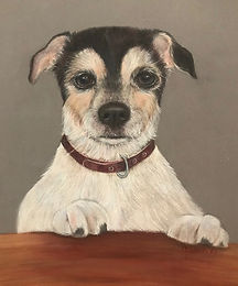 Terrier-Wilson.jpg