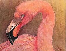 Florida Flamingo by Cathy Edwards