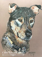 German Sheperd Dobie by Cathy Edwards