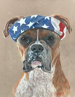 Boxer by Cathy Edwards