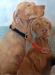 Vizla Dogs by Cathy Edwards