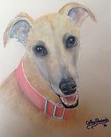 Greyhound by Cathy Edwards