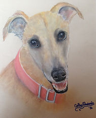 Greyhound by Cathy Edwards