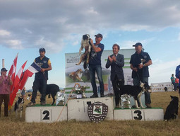 Podium 2015 Continental Sheep Dog Trial