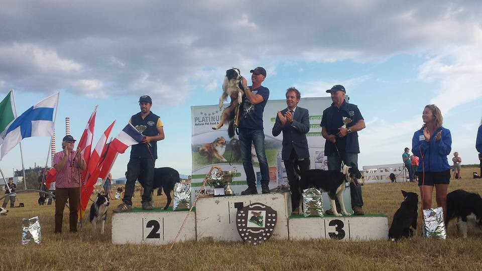 podium 2015 continental sheepdog trial