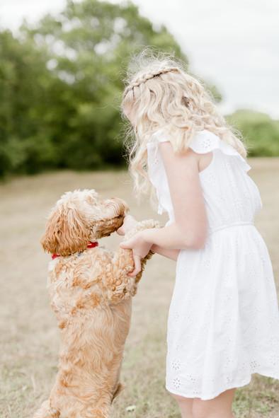 family and dog photo shoot woodland colchester lifestyle photographer