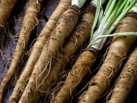 Les salsifis #salsifis #legumes