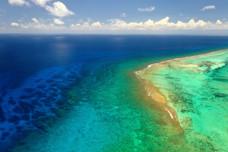 No Filter Needed Reef Cayman.jpg