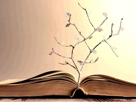 Коран - лингвистическое чудо. Часть 1: Арабский язык. Главы 8 и 9: Стилистика и красноречие