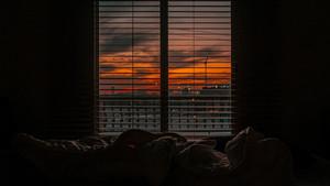 Виды сна