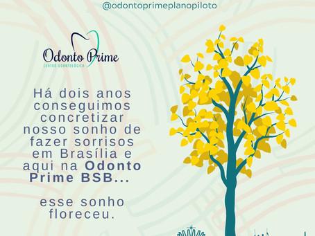 Aniversário Odonto Prime BSB 2020