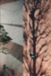 06suzuki01.jpg
