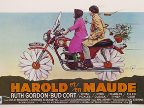 Harold and Maude and                Ginger Pie Recipes