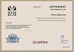 Сертифікат Довгаль.jpg