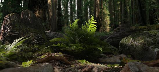 """Ferns"" 3D Render by David Eagan"