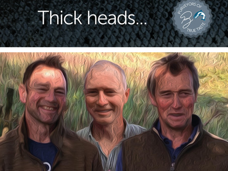 Thick heads...