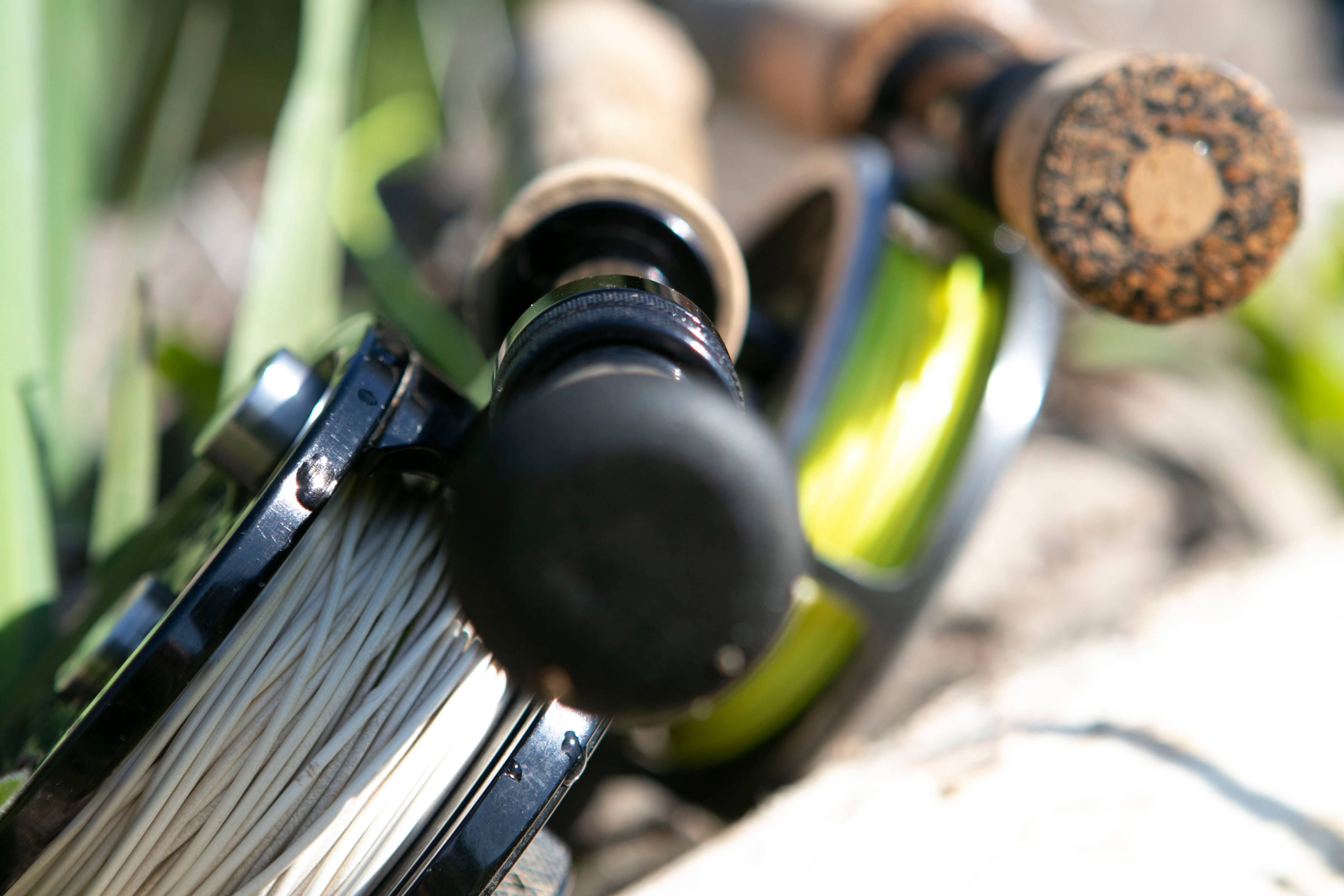 Day Fishing Ticket - 5 fish limit