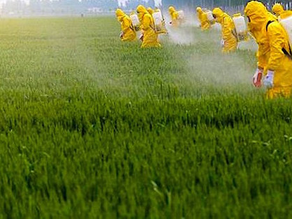 How to Drastically Reduce Colony Exposure to Pesticides