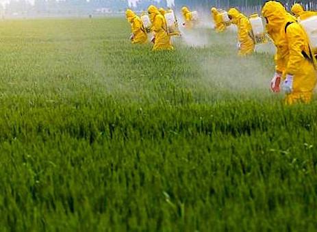 How to Drastically Reduce Colony Exposure to Pesticides