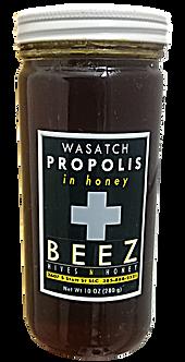 Wasatch Propolis in Honey