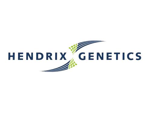 hendrix_logo.jpg